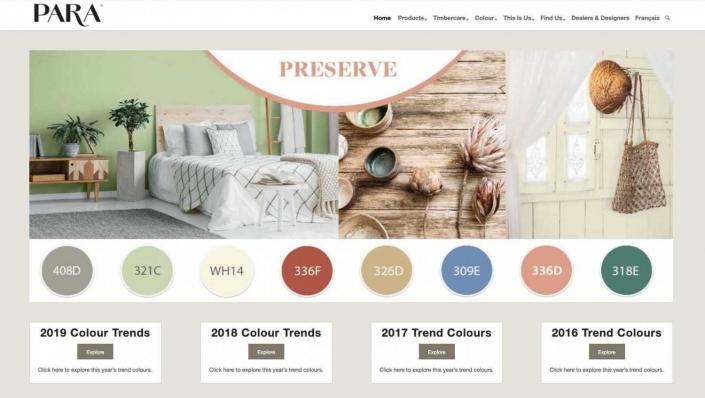Para Paint Web Design