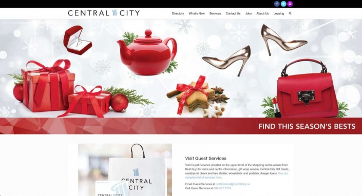 Central City Mall Web Design